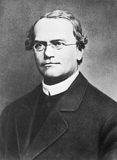 Gregor Mendel Silesian scientist and Augustinian friar