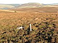 Grouse grit - Dewar Hill - geograph.org.uk - 292268.jpg
