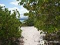 Guadeloupe - panoramio - georama (15).jpg