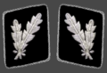 HH-SS-Oberfuhrer-Collar.png