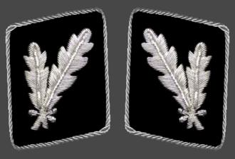 Oberführer - Image: HH SS Oberfuhrer Collar