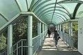 HK 香港南區 Southern District 薄扶林道 Pokfulam Road 瑪麗醫院 Queen Mary Hospital footbridge escalators January 2019 IX2 09.jpg