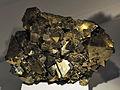Harvard Museum of Natural History. Pyrite. Chicote Grande, Inquisivi, La Paz, Bolivia (DerHexer) 2012-07-20.jpg