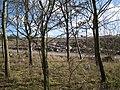 Heathfield landfill site (1-7) - geograph.org.uk - 1742228.jpg