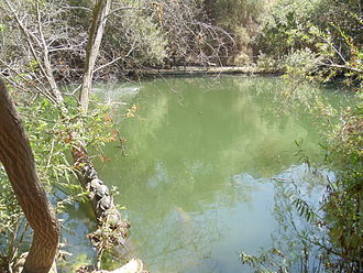 Franklin Canyon Park - Heavenly Pond in Franklin Canyon Park, Los Angeles, California