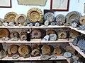 Heiligenstadt ammoniten.jpg