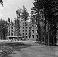 Helsingin olympialaiset 1952 - N210137 - hkm.HKMS000005-000001pr.jpg