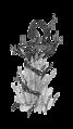 Herbal Asclepios rod 9.png