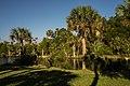 Hernando Beach, Florida - panoramio (4).jpg
