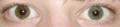Heterochromia.png