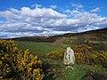 High Gillespie chambered cairn - geograph.org.uk - 727137.jpg