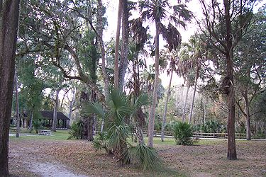 Hillsborough River State Park picnic area.jpg