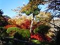 Hirosaki Park (autumn) - panoramio.jpg