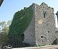 Holdensrath Castle - geograph.org.uk - 558306.jpg
