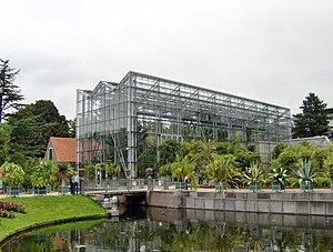 Hubert-Jan Henket - Winter Garden of the Hortus botanicus Leiden
