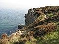 Howth Coastline - panoramio.jpg