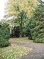 Huerth-Efferen-alter-Friedhof-035.JPG