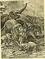Hunting and trapping stories; a book for boys (1903) (14595796488).jpg