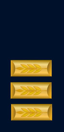 IDF Navy seren