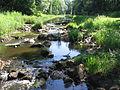 IMG 5875 cascade vistrap Hagmolenbeek.jpg
