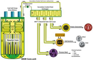 Integral Molten Salt Reactor