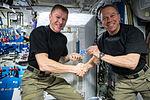 ISS-47 Tim Peake and Tim Kopra in the Harmony node.jpg