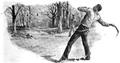 Illustration by Frank Feller for 'Marksmanship' by Gilbert Guerdon in the July 1894 'Strand Magazine' (pp.11-21)-Via Hathi Trust-Australian Boomerang.png