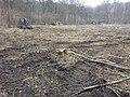 Industrielle Holzproduktion mit schwerem Gerät sl3.jpg