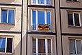 Innere Altstadt, Dresden, Germany - panoramio (1129).jpg