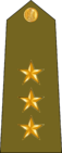 IraqArmyRankInsignia-9.png