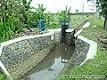 Irigasi Perbatasan Desa Winong - Sarwogadung - panoramio.jpg
