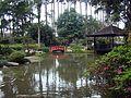 Jardim Japonês, Jardim Botânico - Botanical garden (3903335809).jpg
