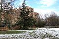 Jardin Compans Caffarelli sous la neige (8398789425).jpg
