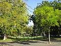 Jardin René Boylesve Larkanal-Strasbourg Tours 2.jpg