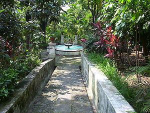 Cuernavaca - Flora in the Jardín Borda