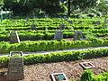 Jardin botanique Dijon 040.jpg