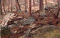 Johan Fredrik Eckersberg - Study of a Forest Floor - NG.M.00933 - National Museum of Art, Architecture and Design.jpg