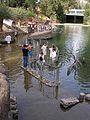 Jordan River - 4189366790.jpg