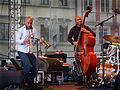 Joshua Redman Trio BJF 2009.jpg