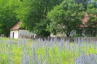 Koń, Kuyavian-Pomeranian Voivodeship Village in Kuyavian-Pomeranian, Poland