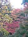 Kiyomizu-dera National Treasure World heritage Kyoto 国宝・世界遺産 清水寺 京都27.JPG
