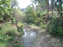 Kladeos River at Ancient Olympia, Peloponnese, Greece 02.jpg
