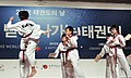 Korea Taekwondo Day 11 (7928150592).jpg