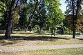 Kozienice - park pałacowy - ZJ001.jpg