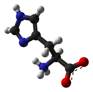 Histidine - Image: L histidine zwitterion from xtal 1993 3D balls B