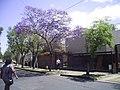 La Negrita - panoramio.jpg