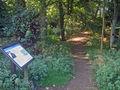 Lady Spencer's Walk - geograph.org.uk - 1583620.jpg