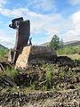 Laika ac Dneprovsky Gulag (6479420803).jpg