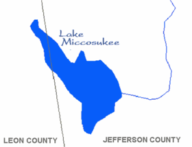 Image illustrative de l'article Lac Miccosukee