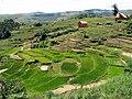 Landscape Madagascar 06.jpg
